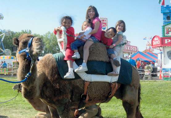 Kids riding a camel